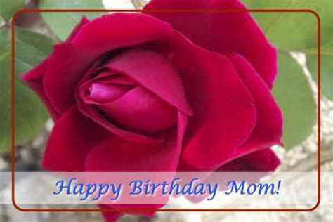 happy birthday mom  rose   mom dad ecards