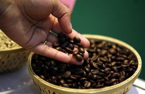 Последние твиты от coffee suppliers (@coffeesuppliers). Toraja Coffee Sapan - Indonesia Coffee Bean Suppliers-Robusta Coffee Beans Supplier-Arabica ...