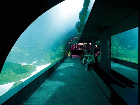 the aquarium visit and tickets