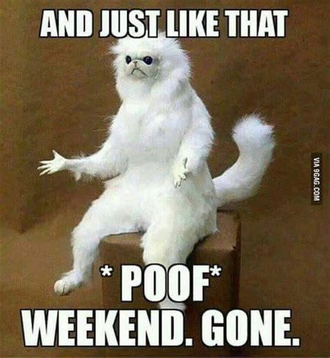 Mondays Meme - 17 best funny monday quotes on pinterest funny weekend quotes monday humor quotes and work