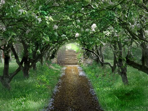 a secret garden cupcakes couture secret gardens enchanted forests