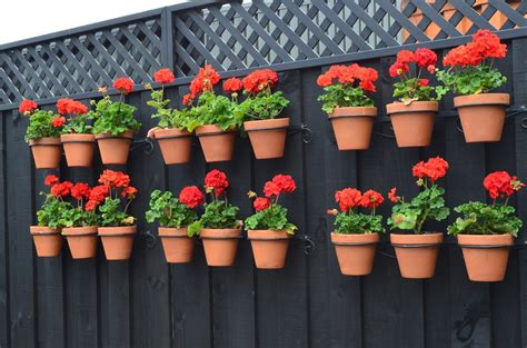 Gardening Tips  When To Plant  Using Planter Boxes And