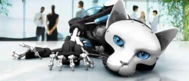 robot cat cyber robot cat future futuristic robots robots