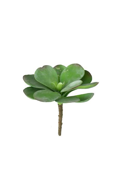 artificial paddle plant succulent / large