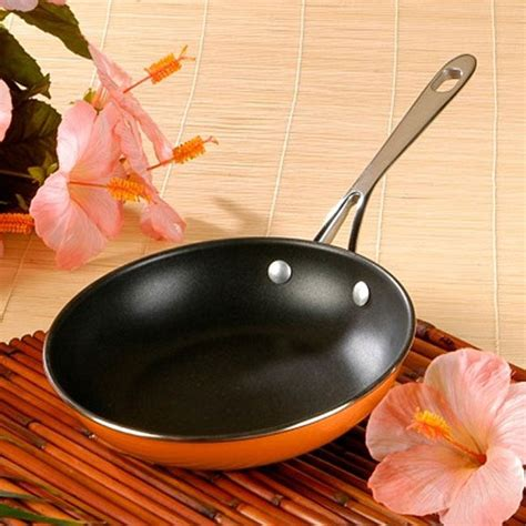 roys stainless steel fusion   frying pan