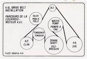 1989 Ford F 150 4 9 Tank Fuel Pump Wiring Diagram 24287 Getacd Es