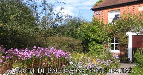 omeopatia fiori di bach i fiori di bach sono omeopatia la risposta 232 no