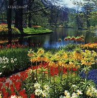 Most Beautiful Flower Gardens
