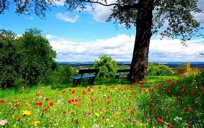 Spring Wallpapers Desktop Nature Landscape Colorful Landscapes