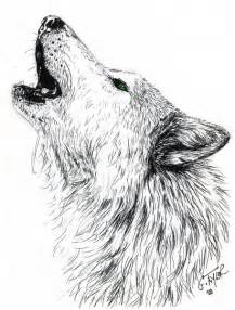 Wolf Drawings Howling