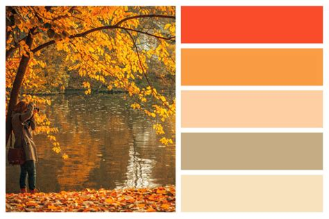 Coming Home Interiors - fall color palettes for interior home painting central sound painting defining excellence