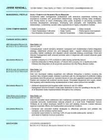 free sle of comprehensive resume exle business sales resume free sle