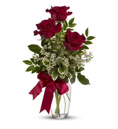 valentine day flowers: Send Flowers For Valentines Day Cheap