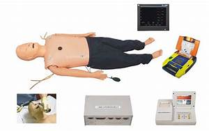 Medical Human Anatomy Nursing Training Cpr Manikin