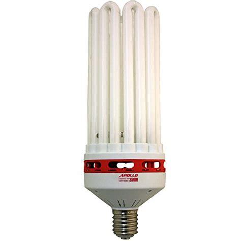 fluorescent grow light bulbs apollo horticulture 250 watt cfl compact fluorescent grow