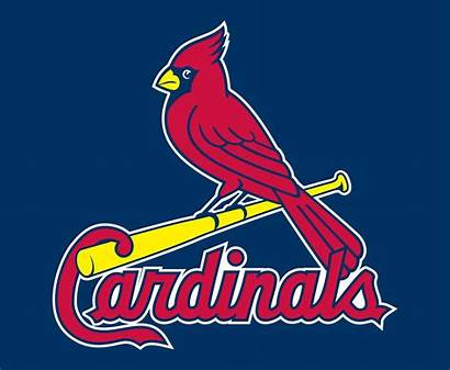 Cardinals Louis St Mlb Logos Team Baseball
