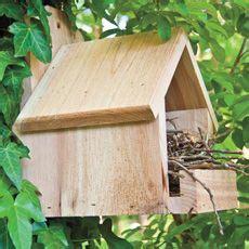 cardinal nesting box bird house bird house plans bird houses