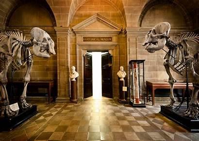 Museum Edinburgh Museums Anatomical Anatomy University Open