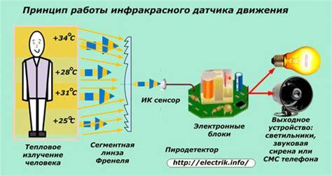 Датчики присутствия типы и виды плюсы устройство модели