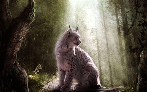 animals lynx fantasy art wallpapers hd desktop