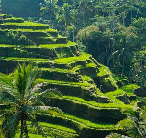 unesco si鑒e unesco heritage indonesia bali oman switzerland ghm