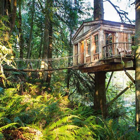 worlds  coolest treehouse hotels wcco cbs minnesota