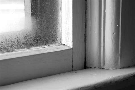 How Condensation Can Destroy Your Old Windows Fasada