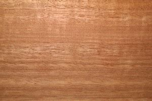 reasons  choose eucalyptus wood outdoor furniture