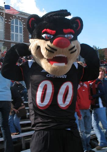 The True Story Behind The Bearcat's Arrest - Down The Drive