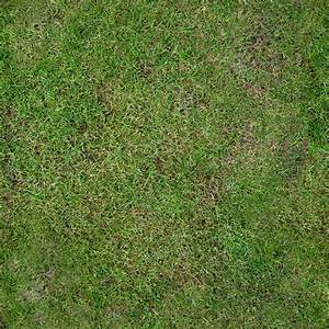 Texture - Grass clean - Vegetation - luGher Texture Library