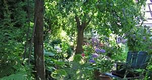 Pflanzen Für Schattengarten : schattengarten planen anlegen und tipps mein sch ner garten ~ Sanjose-hotels-ca.com Haus und Dekorationen