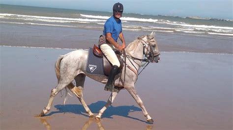 maison du facteur cheval la maison du cheval essaouira morocco updated 2018 top tips before you go with photos