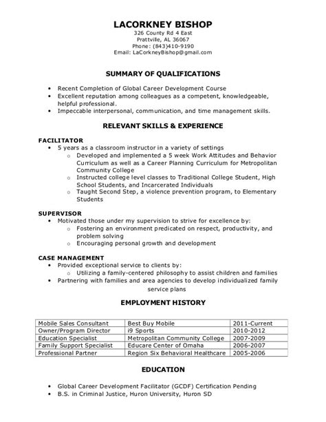 What Is The Format Of A Functional Resume by Functional Resume Resume Cv