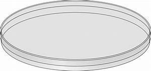 Clipart - Petri dish