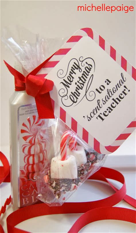michelle paige quick teacher soap gift for christmas