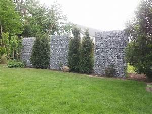Gabionen Als Sichtschutz : gabionenmauer in 1600 mm h he als sichtschutz aufgelockert mit b umen gabionen steink rbe ~ Buech-reservation.com Haus und Dekorationen