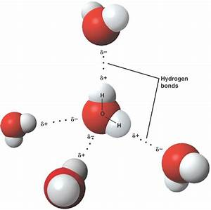 Polar Covalent  Nonpolar Covalent  U0026 Ionic Bonds