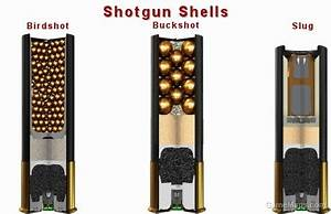 12 Gauge Birdshot Pump Shotgun Shells