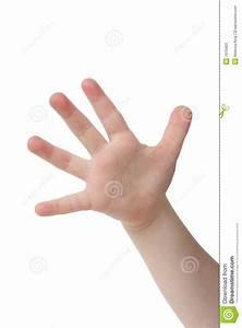 Five Fingers Clipart - Clipart Suggest