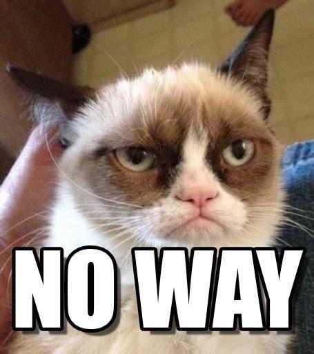 grumpy cat reverse meme  memegen