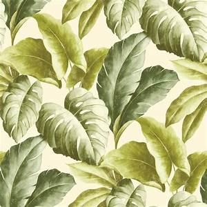 Grandeco Botanical Tropical Leaves Pattern Wallpaper Tree ...