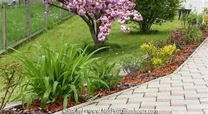 Petit Arbuste Fleuri : jardin ma bordure d 39 arbustes fleuris avance ~ Premium-room.com Idées de Décoration