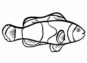 Free Printable Fish Coloring Pages For Kids