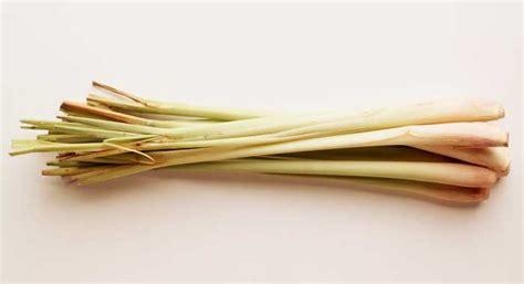 how to use lemongrass lemon grass bbc good food