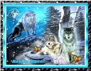 Symbole Du Loup : symboles et mythes du loup r ves et passions de darkness ~ Melissatoandfro.com Idées de Décoration
