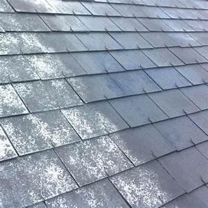 Probleme D Humidite Mur Interieur : top 10 des nettoyants et anti mousse sur ~ Melissatoandfro.com Idées de Décoration