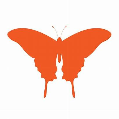 Butterfly Orange Clipart Clip Pixabay Domain Publicdomainpictures