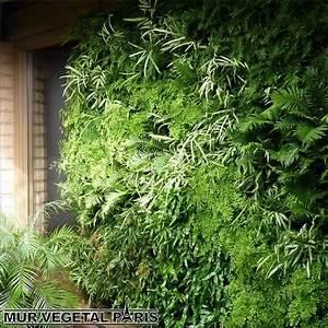 Mur Vegetal Exterieur : mur v g tal ext rieur naturel mur v g tal paris ~ Melissatoandfro.com Idées de Décoration