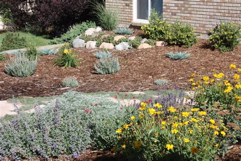 xeriscape pictures all the dirt on gardening 08 10
