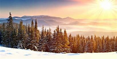 Winter Snowy Forest Snow Mountains Mist Sun